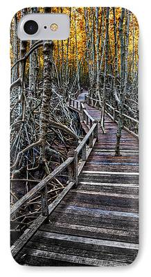 Mangrove Forest Digital Art iPhone Cases