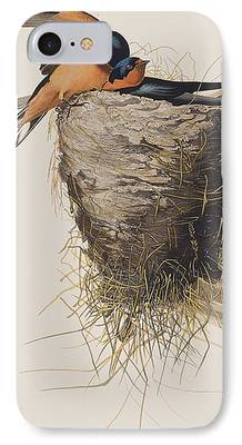 Barn Swallow Paintings iPhone Cases