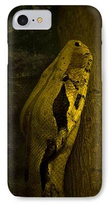 Brown Snake IPhone 7 Cases