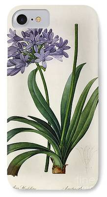 Botanical Paintings iPhone Cases