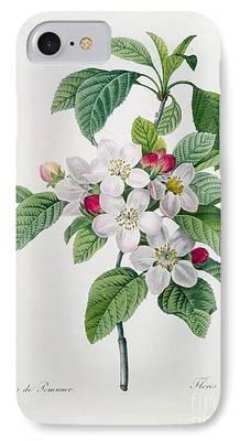 Cut Flowers iPhone Cases