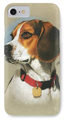 Beagle IPhone 7 Cases