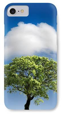 Oak Trees iPhone Cases