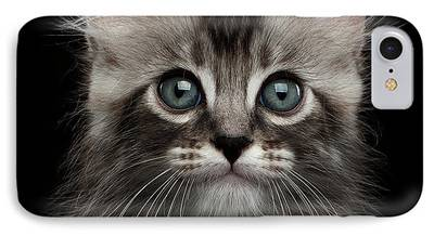 Cat Reflection iPhone Cases