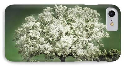 Cherry Tree iPhone Cases