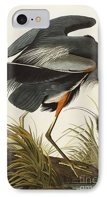 Wild Life Drawings iPhone Cases