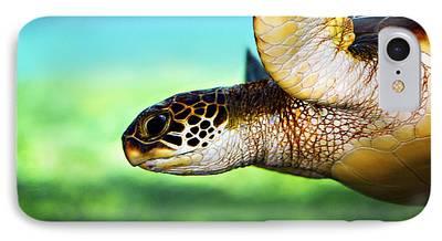 Turtle iPhone 7 Cases