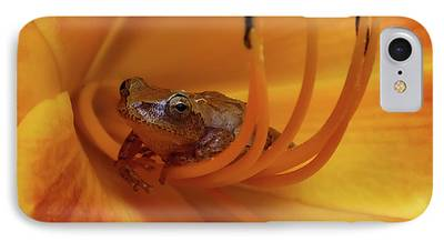 Spring Peepers iPhone Cases