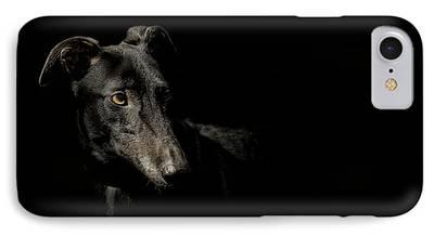 Greyhound Photographs iPhone Cases