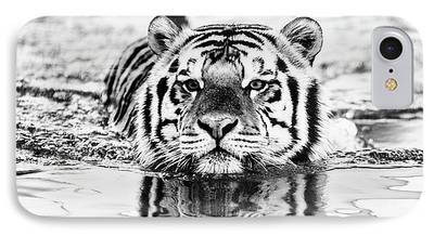 The Tiger Photographs iPhone Cases