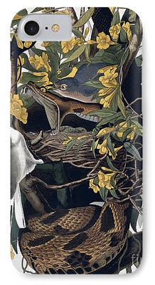 Animals Drawings iPhone Cases