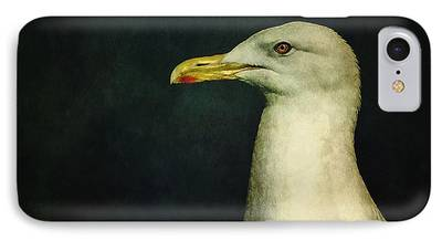 Seagull IPhone 7 Cases