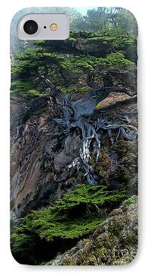 Point Lobos iPhone Cases