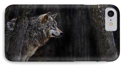 Wolf Pics Mixed Media iPhone Cases