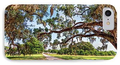 Evergreen Plantation iPhone Cases