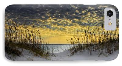 Sea Oats iPhone Cases