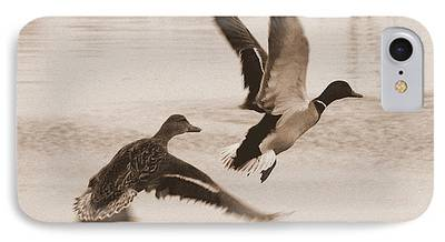 Two Ducks In Flight Photographs iPhone Cases