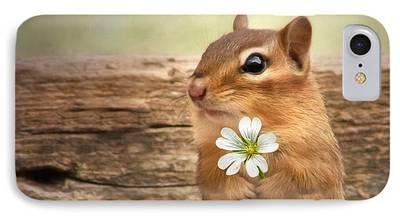 Squirrel iPhone 7 Cases
