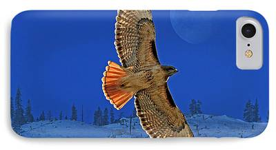 Red Tail Hawk iPhone Cases