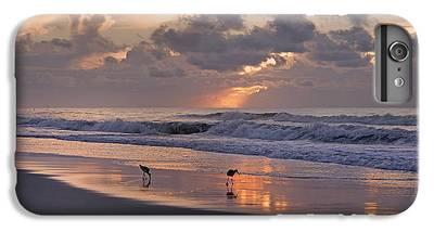 Sandpiper iPhone 7 Plus Cases