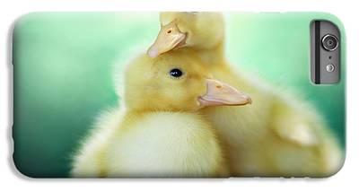 Duck iPhone 7 Plus Cases