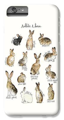Rabbit iPhone 7 Plus Cases