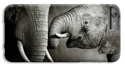 Small Animal iPhone 7 Plus Cases