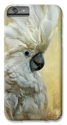Cockatoo iPhone 7 Plus Cases