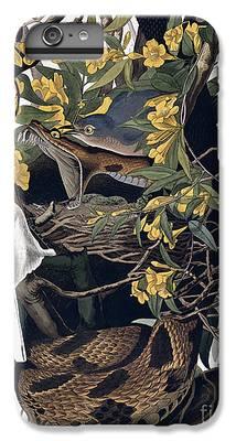 Largemouth Bass iPhone 7 Plus Cases