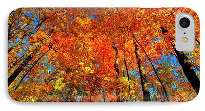 Indiana Landscapes Photographs iPhone Cases