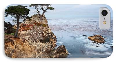 Cypress Trees iPhone Cases