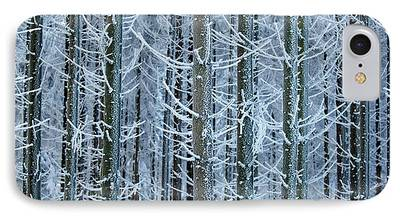 Fir Trees Photographs iPhone Cases