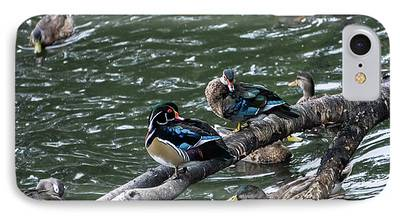 Water Birds iPhone 8 Cases