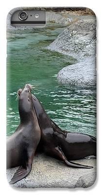 Zoo iPhone 8 Plus Cases