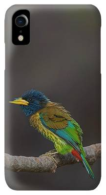 Beautiful Nature Photographs iPhone XR Cases