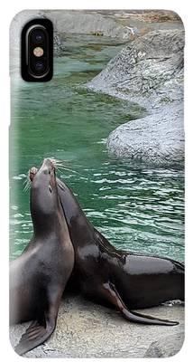 Zoo iPhone XS Max Cases