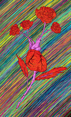 Heart Made Of Rose Drawing Posters