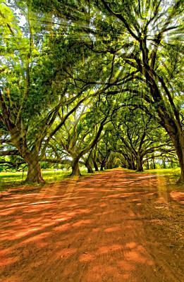 Evergreen Plantation Digital Art Posters