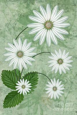 Botany Digital Art Posters