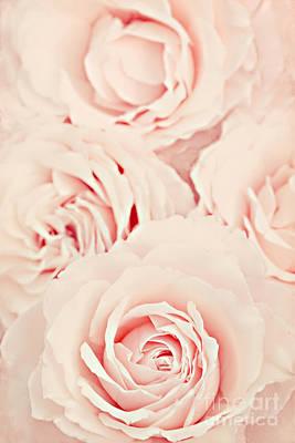 Pink Blossoms Digital Art Posters