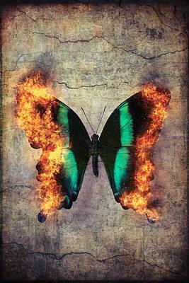 Destructive Photographs Posters