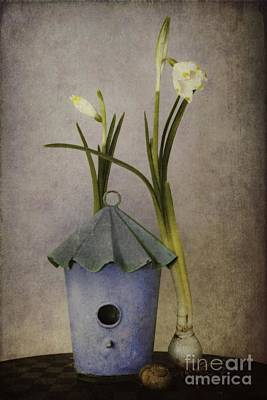 Spring Bulbs Digital Art Posters