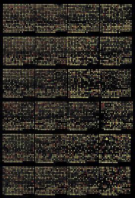 Biochemistry Biochemical Posters