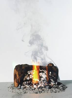 Burning Logs Photographs Posters