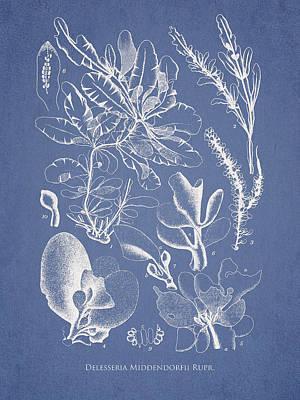 Algae Digital Art Posters