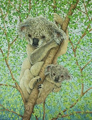 Koala Posters