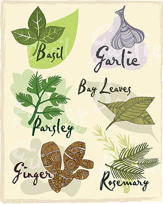 Herbs Photographs Posters
