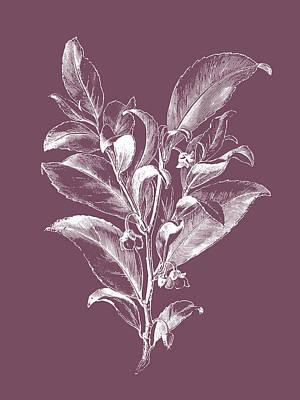Designs Similar to Visnea Mocanera Purple Flower