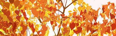 Botanic Illustration Digital Art Posters
