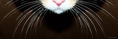 Striped Cat Digital Art Posters